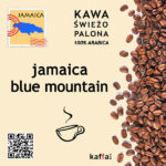 kawa arabica Jamaica Blue Mountain